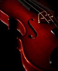 Violino-Detalhes