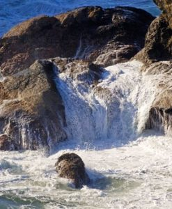 sea-rock-206_MylZsUF_-web